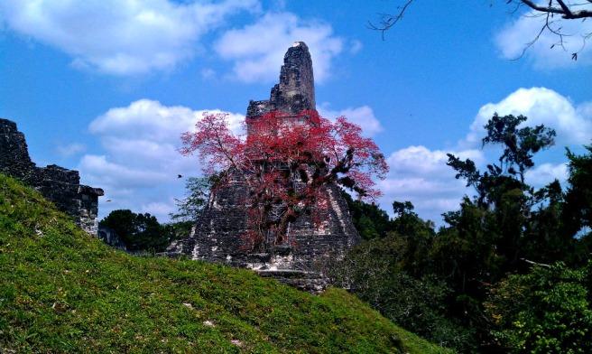 11 IngallsTikalGuatemala