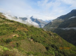 LynnCamata-Carijana valley modern field